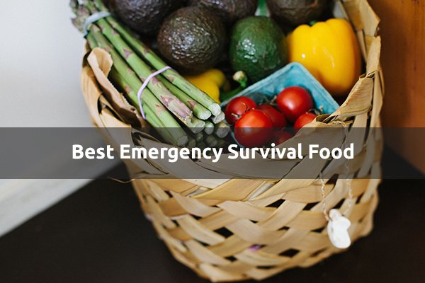 Emergency Food Supply Reviews